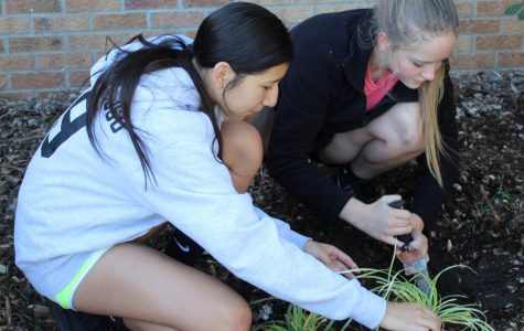 Students' selfless acts help community