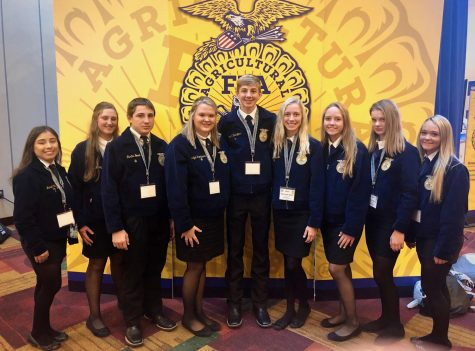 FFA Year in Review