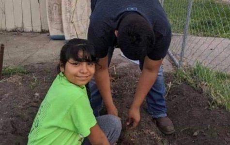 Bryan and Yareli Romero help plant trees with the SCS Warriors Academy program.